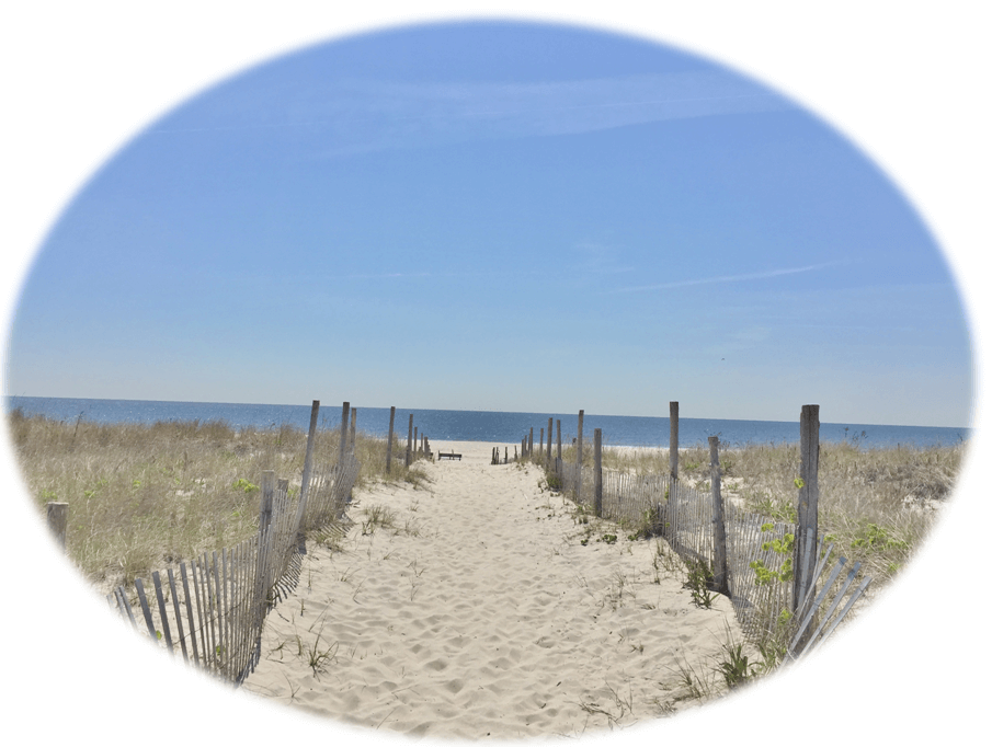 Beach Haven West Real Estate | Kim Pileggi