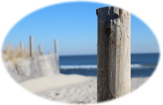 About Beach Haven West | Beach Haven West Real Estate | Stafford Township NJ