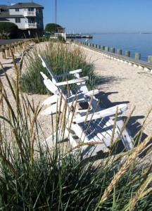 Beach Haven West Property Disclosure After Hurricane Sandy