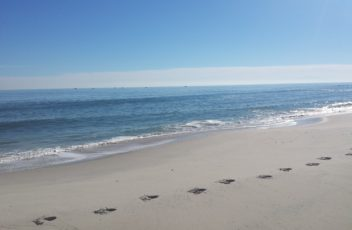 Interest Rate Update in the Beach Haven West NJ Real Estate Market
