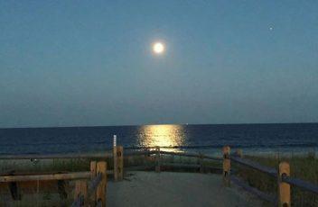 Beach Haven West Home Sales Update